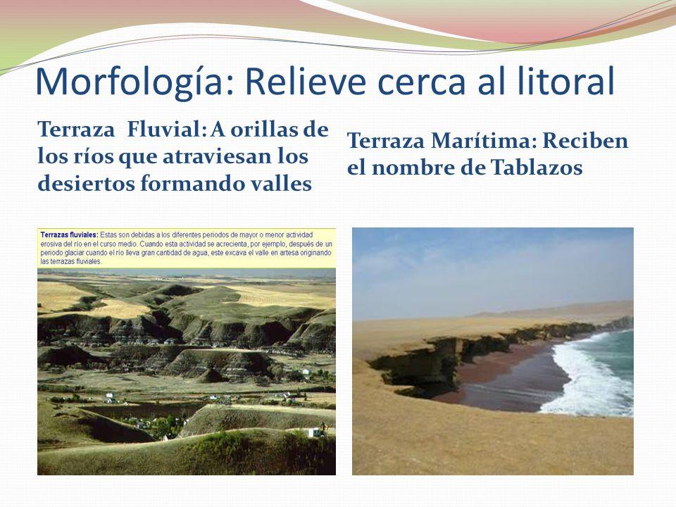 Morfología: Relieve cerca al litoral Terraza Fluvial: A orillas de los ríos que atraviesan los desiertos formando valles Terraza Marítima: Reciben el