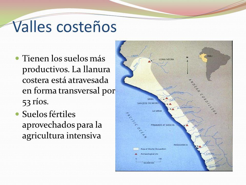Valles costeños Tienen los suelos más productivos. La llanura costera está atravesada en forma transversal por 53 ríos. Suelos fértiles aprovechados p