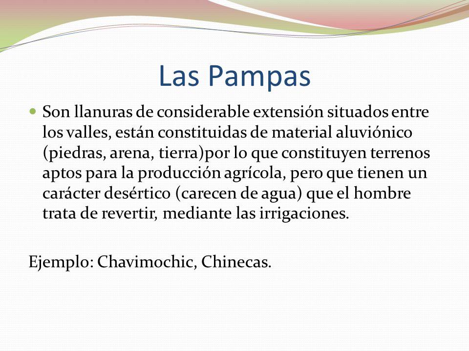 Las Pampas Son llanuras de considerable extensión situados entre los valles, están constituidas de material aluviónico (piedras, arena, tierra)por lo