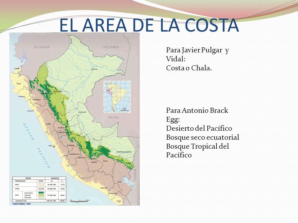 EL AREA DE LA COSTA Para Javier Pulgar y Vidal: Costa o Chala. Para Antonio Brack Egg: Desierto del Pacífico Bosque seco ecuatorial Bosque Tropical de