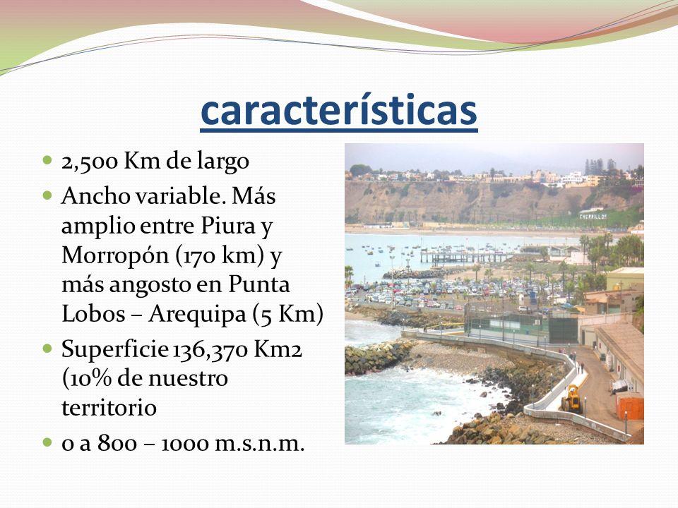 características 2,500 Km de largo Ancho variable. Más amplio entre Piura y Morropón (170 km) y más angosto en Punta Lobos – Arequipa (5 Km) Superficie