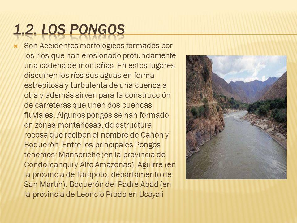 Son Accidentes morfológicos formados por los ríos que han erosionado profundamente una cadena de montañas. En estos lugares discurren los ríos sus agu