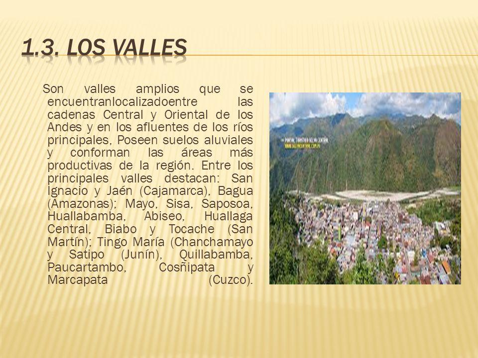 Son valles amplios que se encuentranlocalizadoentre las cadenas Central y Oriental de los Andes y en los afluentes de los ríos principales, Poseen sue