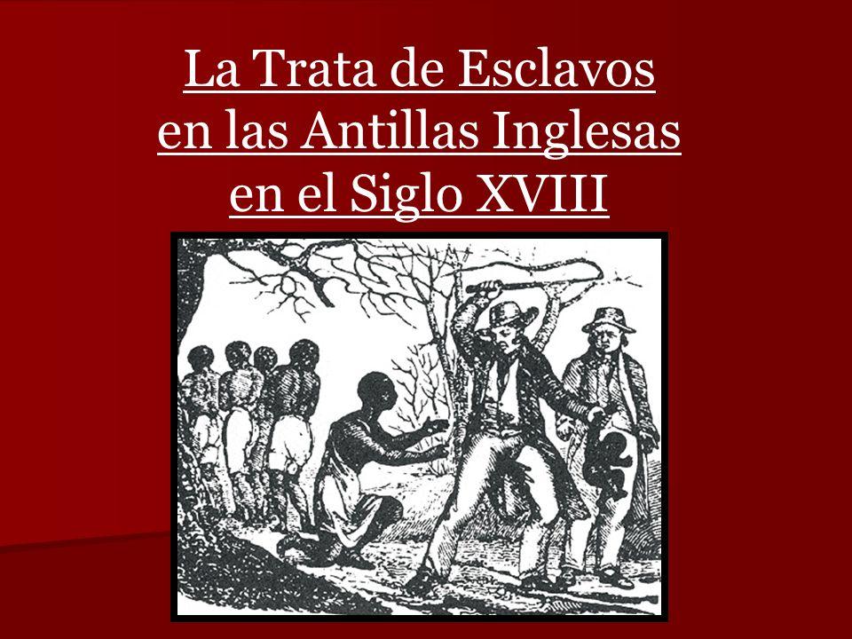La Trata de Esclavos en las Antillas Inglesas en el Siglo XVIII