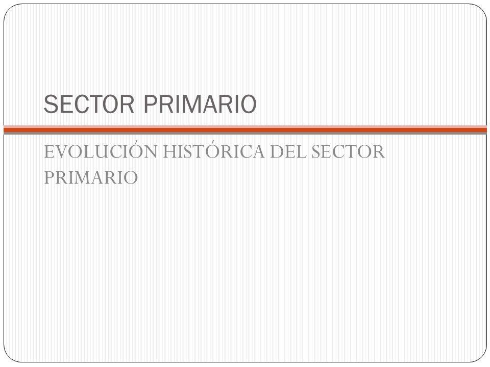 SECTOR PRIMARIO EVOLUCIÓN HISTÓRICA DEL SECTOR PRIMARIO