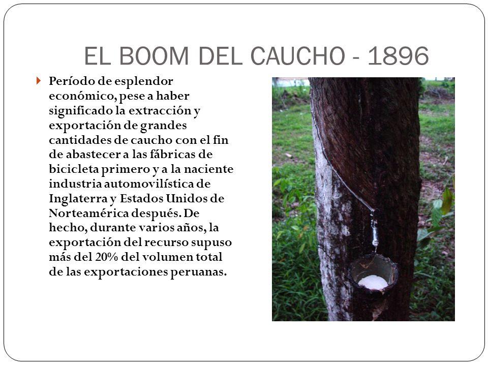 EL BOOM DEL CAUCHO - 1896 Período de esplendor económico, pese a haber significado la extracción y exportación de grandes cantidades de caucho con el