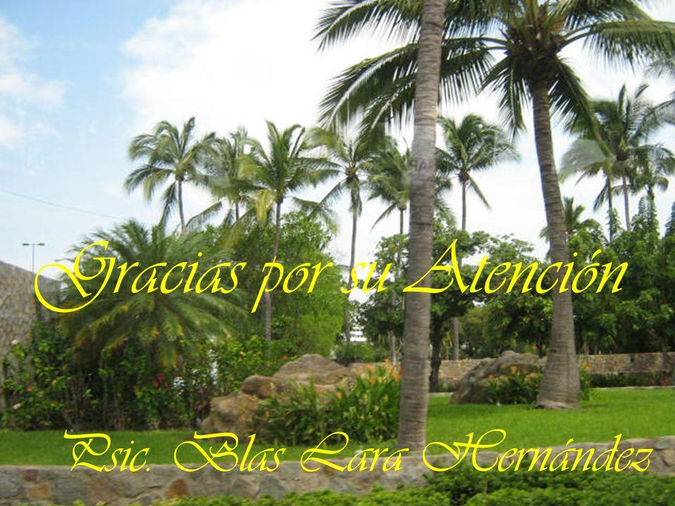 Gracias por su Atención Psic. Blas Lara Hernández