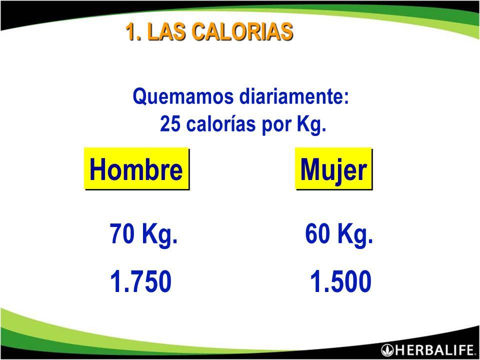 ? 1.Comidas con exceso de calorías. 2.Comidas con exceso de grasas. 3.Comidas con exceso de azúcares. 4.Deficiencias y Falta de nutrientes. ¿Porqué su