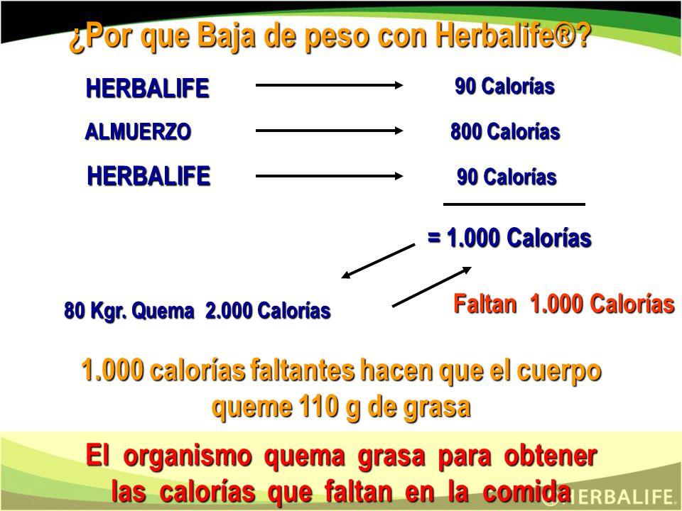 BATIDO COMIDA TABLETAS TE 2 ó + 3 33 ¿COMO SE TOMA LA NUTRICION CELULAR®? 1 3 2 ó + 2 13 2