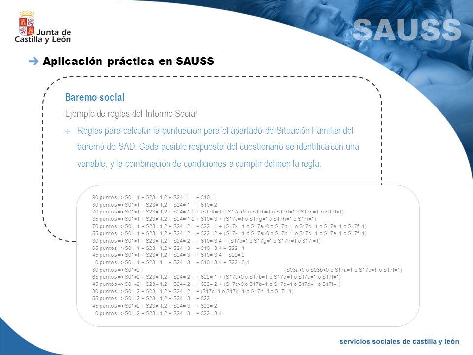 Aplicación práctica en SAUSS Baremo social Ejemplo de reglas del Informe Social 90 puntos => S01=1 + S23= 1,2 + S24= 1 + S10= 1 80 puntos => S01=1 + S