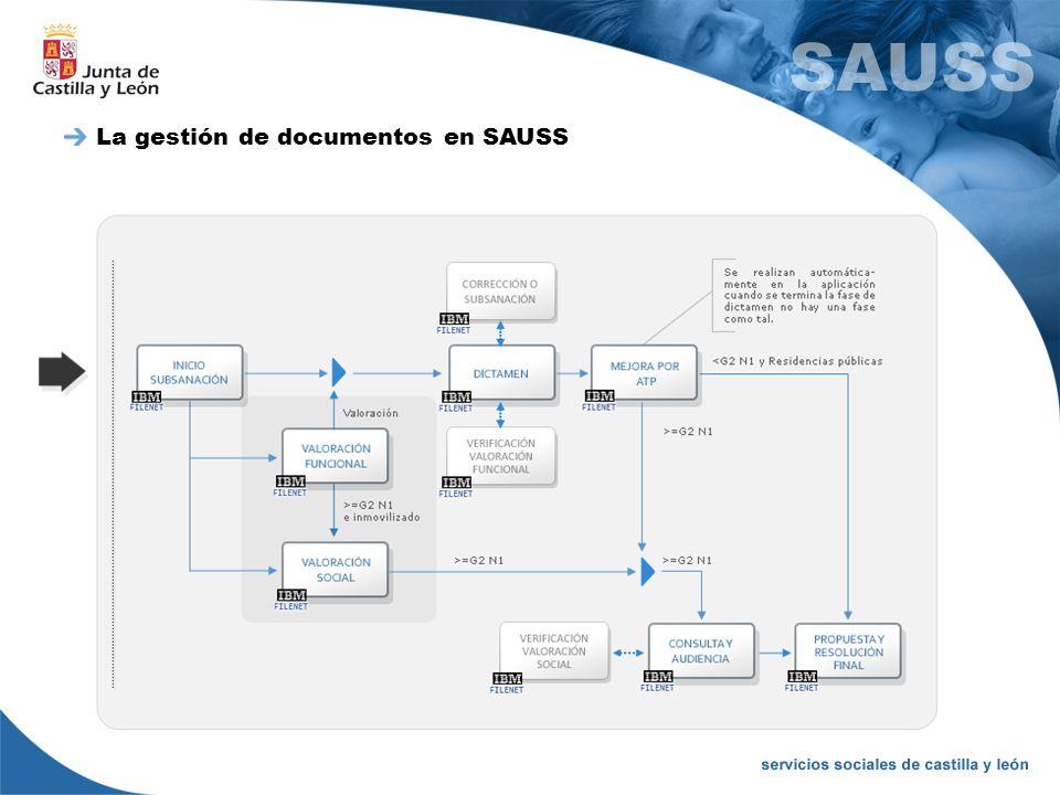 La gestión de documentos en SAUSS