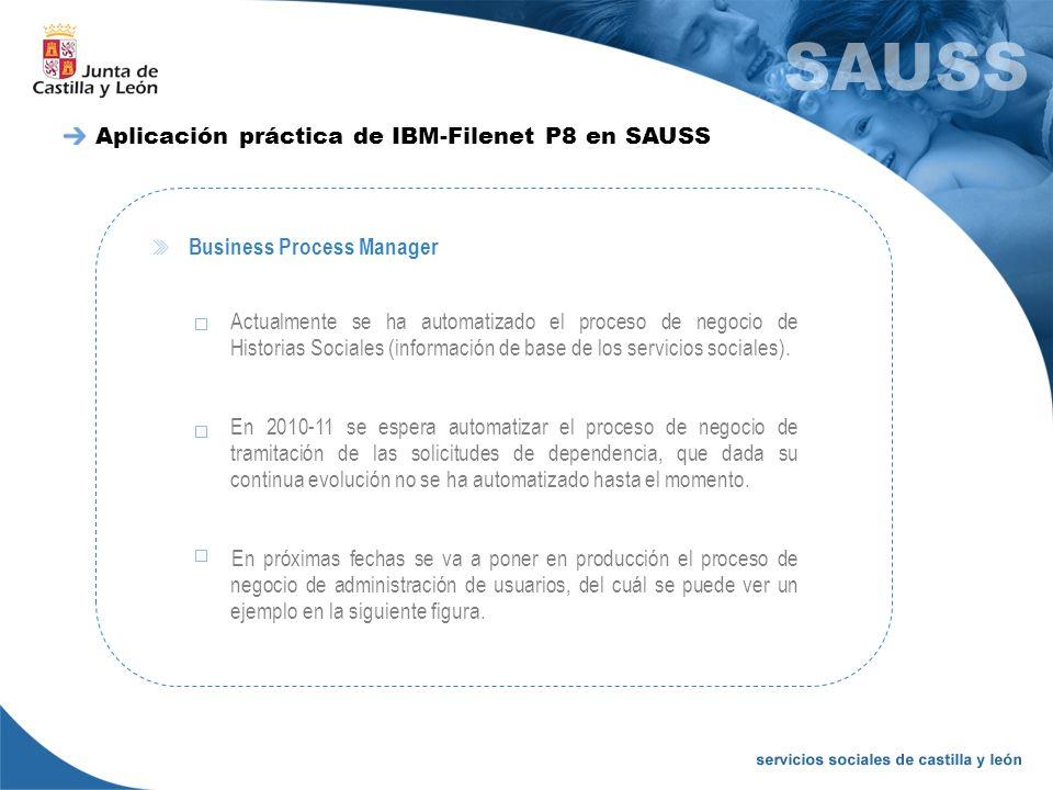 Business Process Manager Actualmente se ha automatizado el proceso de negocio de Historias Sociales (información de base de los servicios sociales). E