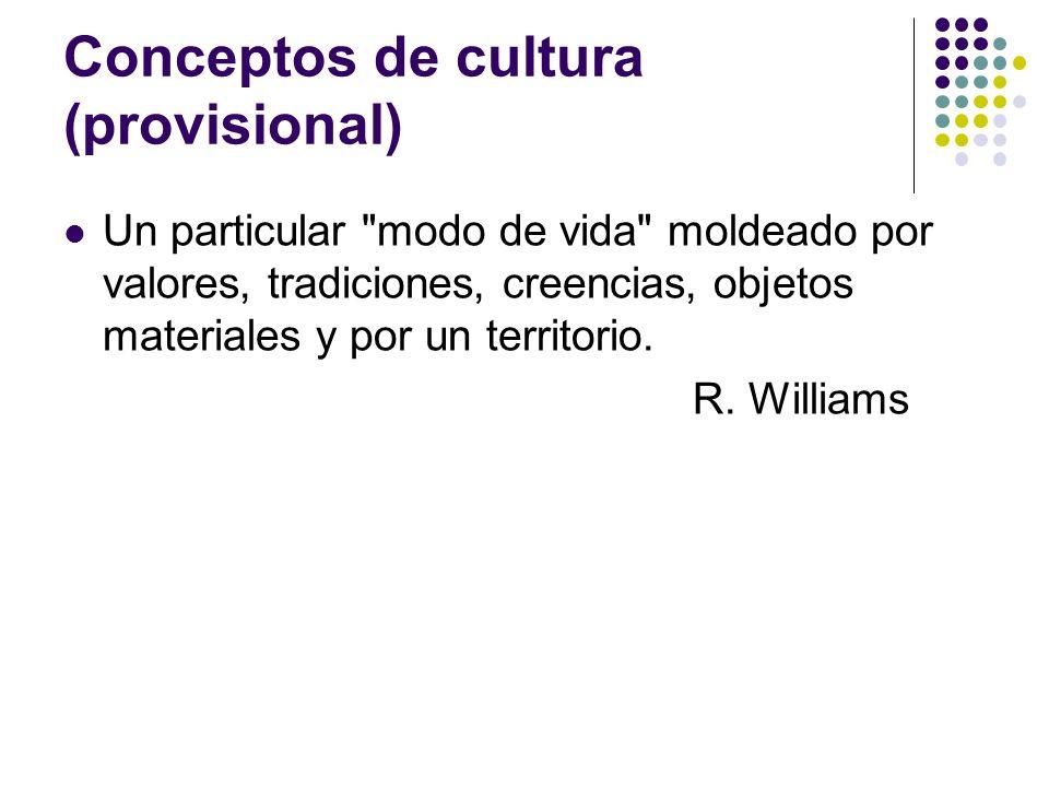 Conceptos de cultura (provisional) Un particular