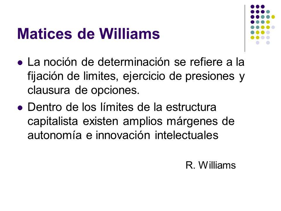 Matices de Williams La noción de determinación se refiere a la fijación de limites, ejercicio de presiones y clausura de opciones. Dentro de los límit