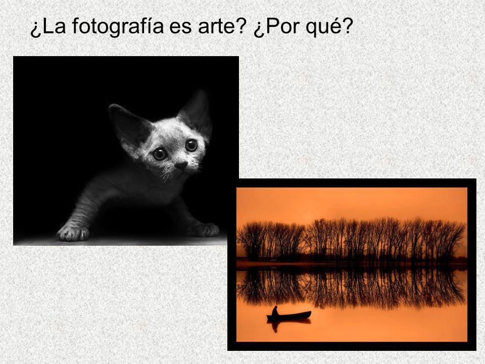 ¿La fotografía es arte? ¿Por qué?