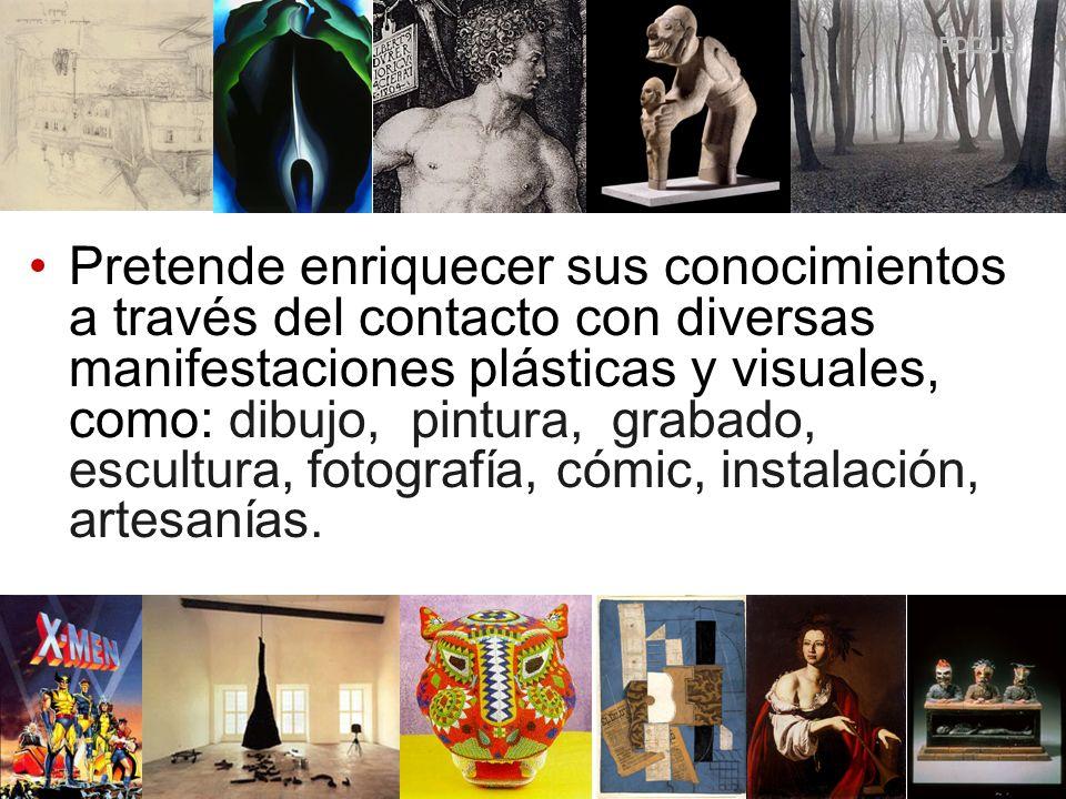 Pretende enriquecer sus conocimientos a través del contacto con diversas manifestaciones plásticas y visuales, como: dibujo, pintura, grabado, escultu