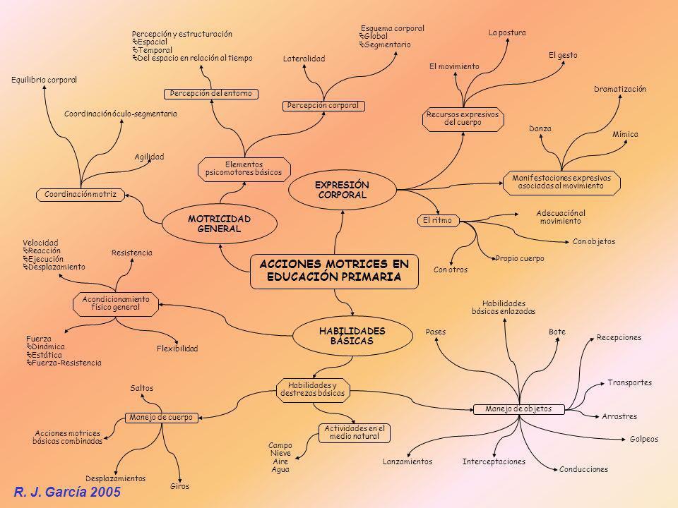 ACCIONES MOTRICES EN EDUCACIÓN PRIMARIA MOTRICIDAD GENERAL HABILIDADES BÁSICAS EXPRESIÓN CORPORAL Agilidad Equilibrio corporal Coordinación óculo-segm