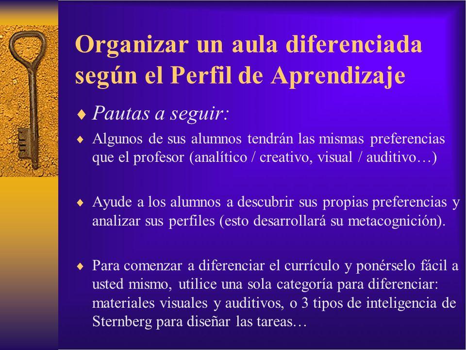 Pautas a seguir: Algunos de sus alumnos tendrán las mismas preferencias que el profesor (analítico / creativo, visual / auditivo…) Ayude a los alumnos