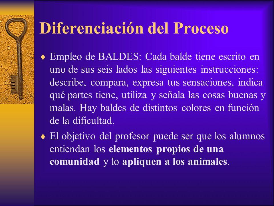 Diferenciación del Proceso Empleo de BALDES: Cada balde tiene escrito en uno de sus seis lados las siguientes instrucciones: describe, compara, expres