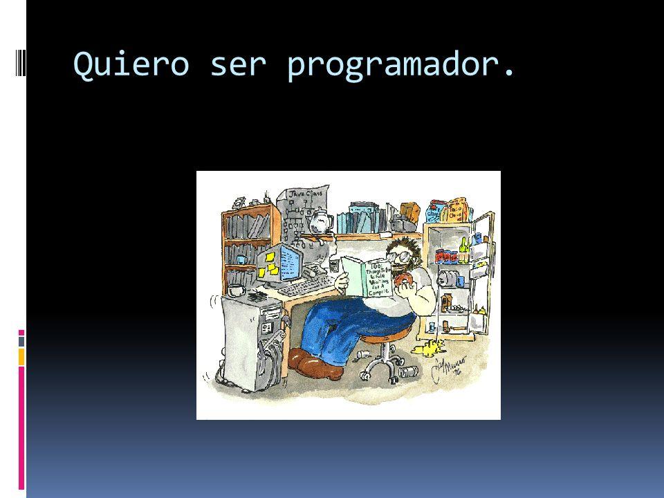 Quiero ser programador.