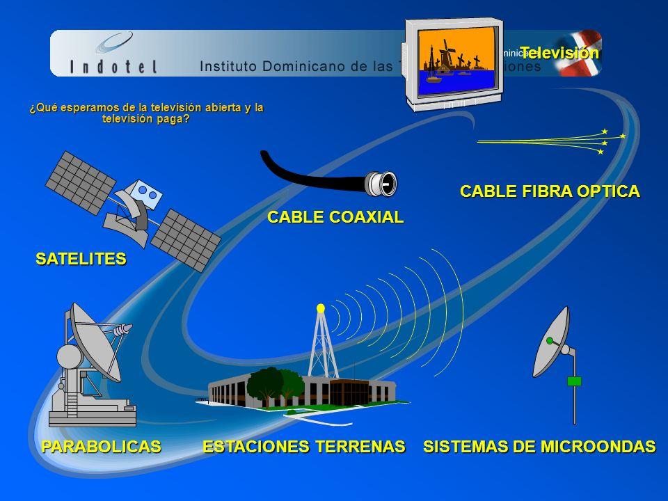 Articulo 131. Las personas físicas o jurídicas autorizadas para prestar el servicio publico de telecomunicaciones de radiodifusión (radio o televisión
