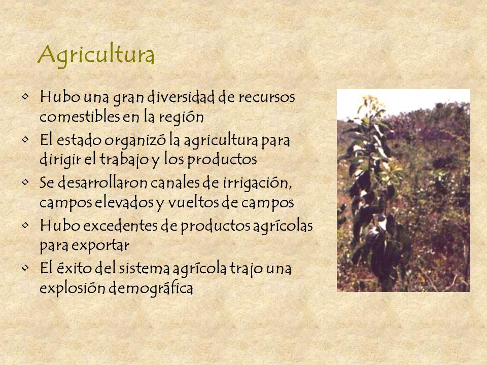 Comercio Se comerciaron productos por toda Mesoamérica Cada ciudad rivalizaba con las otras para dominar las rutas mercantiles El comercio extendió la