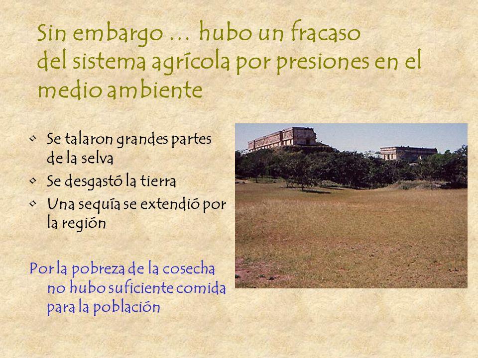 Agricultura Hubo una gran diversidad de recursos comestibles en la región El estado organizó la agricultura para dirigir el trabajo y los productos Se