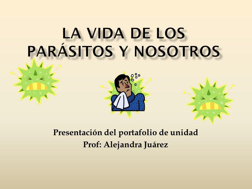 Presentación del portafolio de unidad Prof: Alejandra Juárez