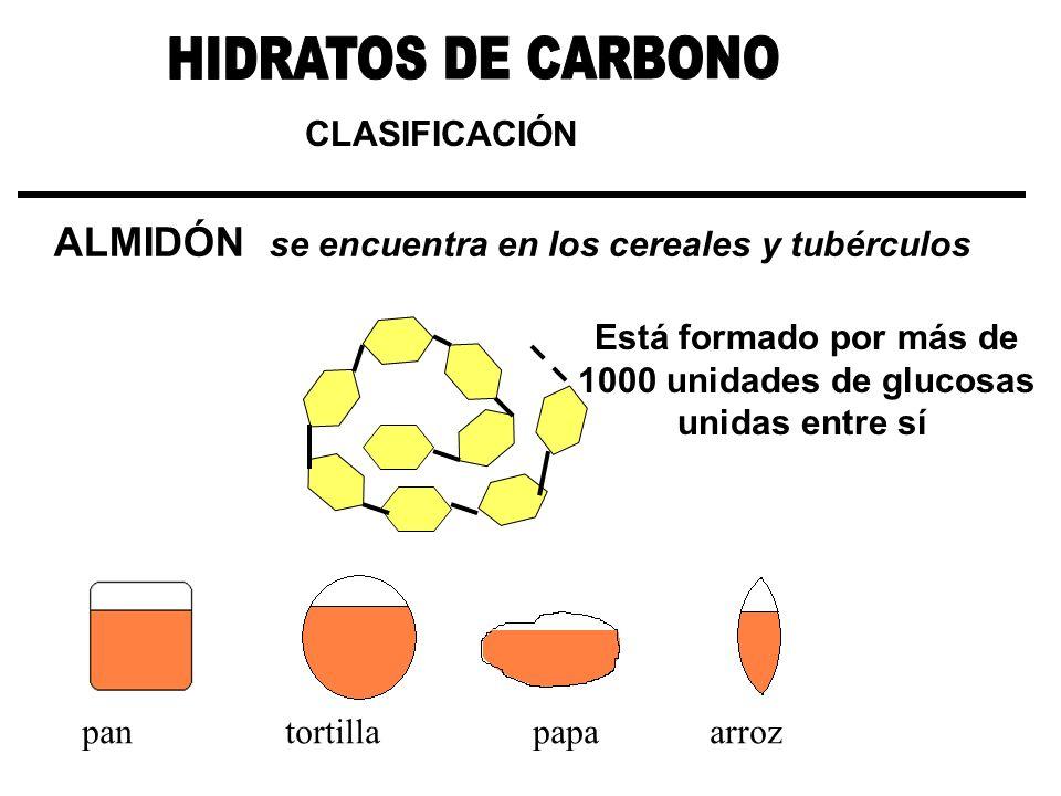 CLASIFICACIÓN ALMIDÓN se encuentra en los cereales y tubérculos Está formado por más de 1000 unidades de glucosas unidas entre sí pan tortilla papa ar