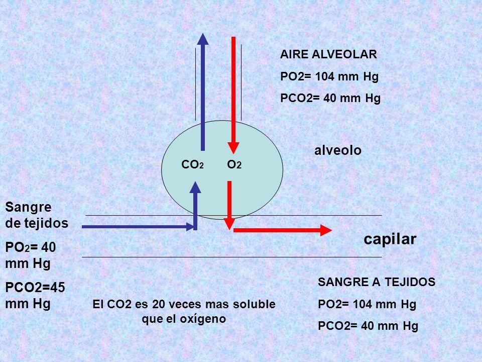 CO 2 O2O2 capilar alveolo Sangre de tejidos PO 2 = 40 mm Hg PCO2=45 mm Hg AIRE ALVEOLAR PO2= 104 mm Hg PCO2= 40 mm Hg SANGRE A TEJIDOS PO2= 104 mm Hg