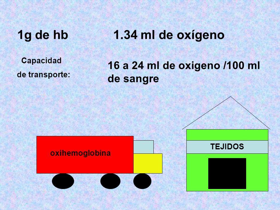 1g de hb 1.34 ml de oxígeno Capacidad de transporte: 16 a 24 ml de oxigeno /100 ml de sangre oxihemoglobina TEJIDOS