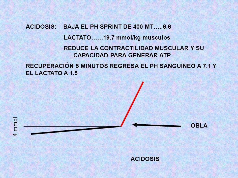 ACIDOSIS: BAJA EL PH SPRINT DE 400 MT…..6.6 LACTATO……19.7 mmol/kg musculos REDUCE LA CONTRACTILIDAD MUSCULAR Y SU CAPACIDAD PARA GENERAR ATP RECUPERAC