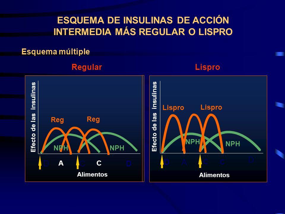 BLSHSB Reg NPH Insulin Effect Meals NPH Reg LSB Lispro NPH Lispro NPH D A C C D Reg NPH Efecto de las insulinas Alimentos NPH Reg D C Efecto de las in