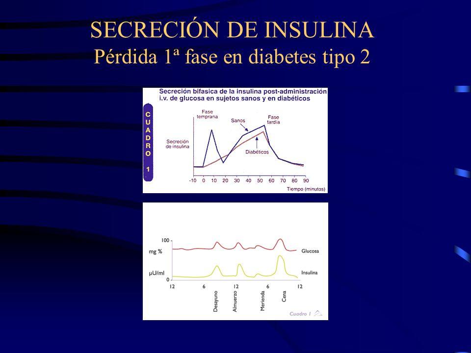 El principal estímulo para la secreción de insulina es la glucosa En personas sanas la cantidad de insulina secretada, está contínuamente controlada a