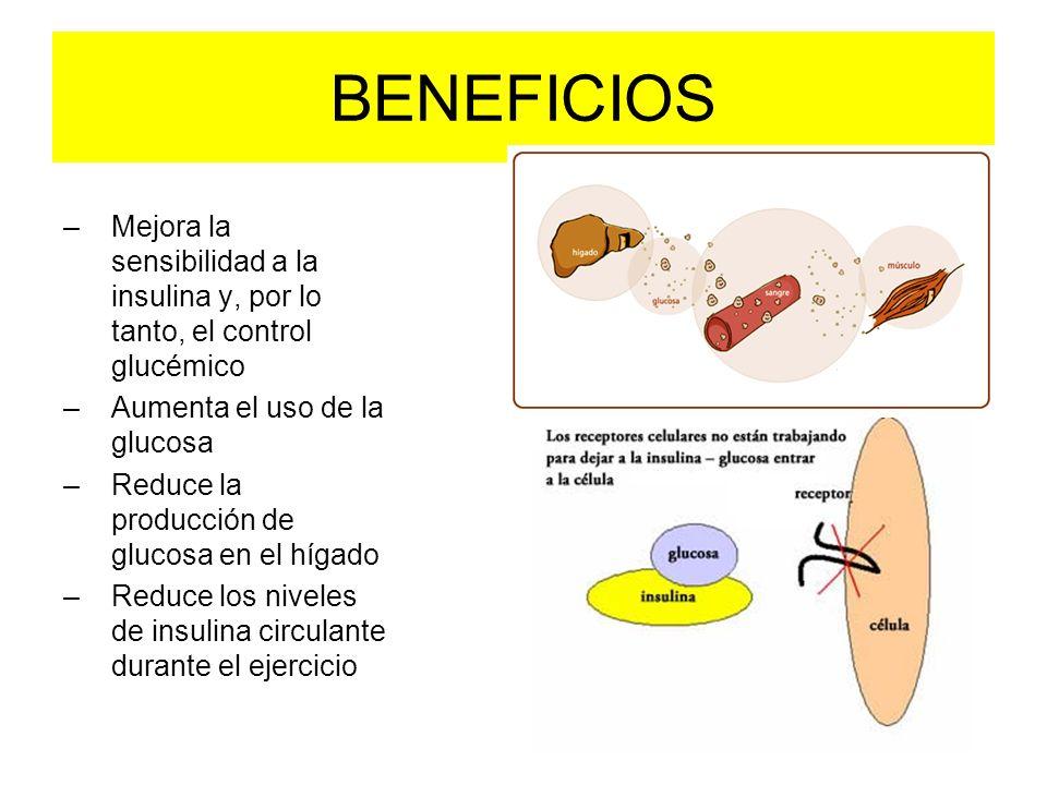 BENEFICIOS –Mejora la sensibilidad a la insulina y, por lo tanto, el control glucémico –Aumenta el uso de la glucosa –Reduce la producción de glucosa