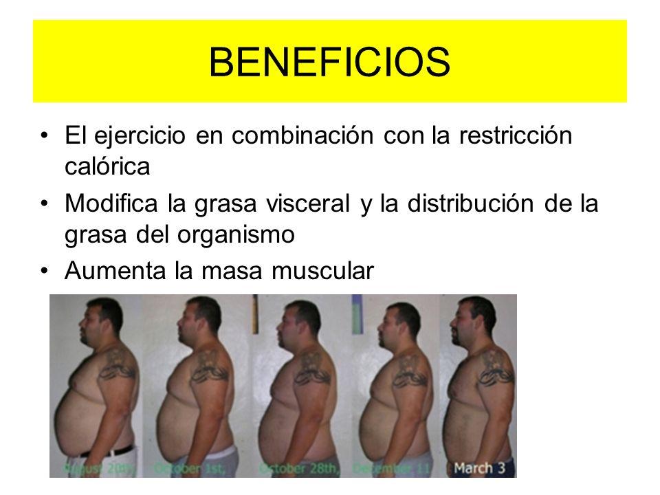 BENEFICIOS El ejercicio en combinación con la restricción calórica Modifica la grasa visceral y la distribución de la grasa del organismo Aumenta la m