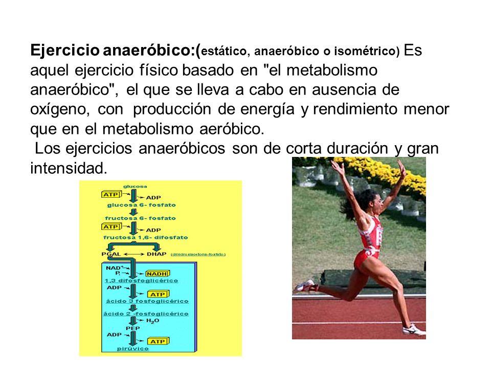 Ejercicio anaeróbico:( estático, anaeróbico o isométrico) Es aquel ejercicio físico basado en