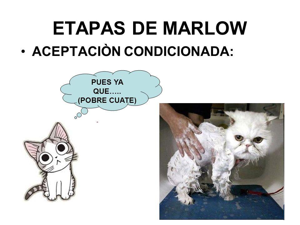 ACEPTACIÒN CONDICIONADA: ETAPAS DE MARLOW PUES YA QUE….. (POBRE CUATE)