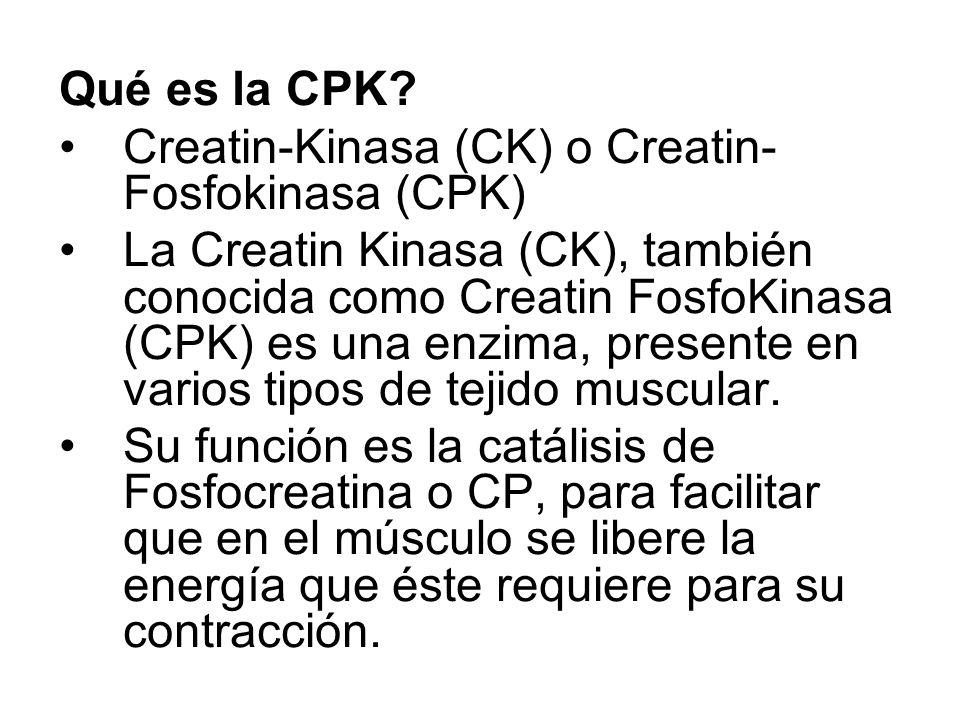 Qué es la CPK? Creatin-Kinasa (CK) o Creatin- Fosfokinasa (CPK) La Creatin Kinasa (CK), también conocida como Creatin FosfoKinasa (CPK) es una enzima,