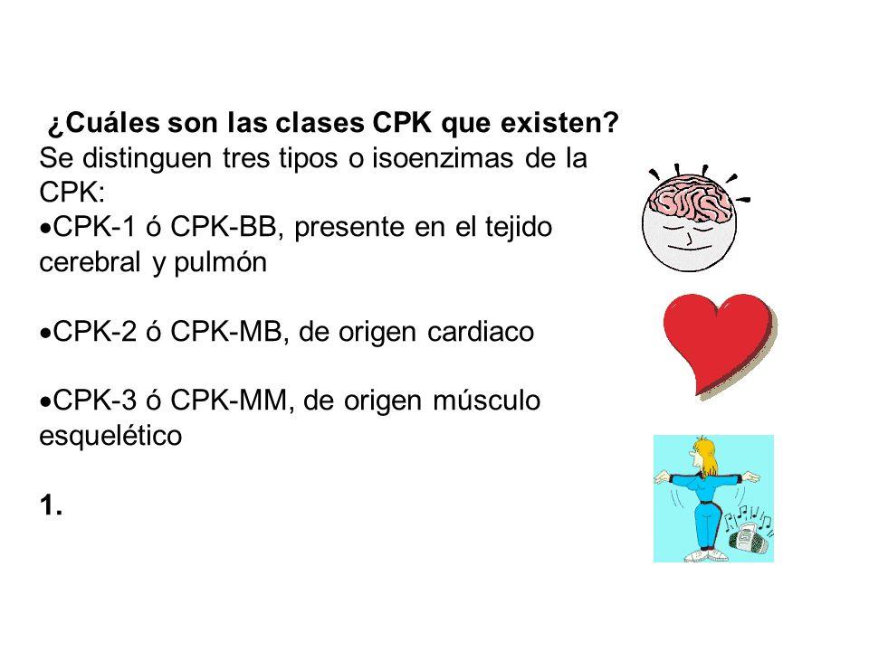 ¿Cuáles son las clases CPK que existen? Se distinguen tres tipos o isoenzimas de la CPK: CPK-1 ó CPK-BB, presente en el tejido cerebral y pulmón CPK-2