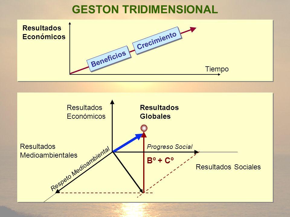 Beneficios Crecimiento Resultados Globales Resultados Sociales Resultados Económicos Respeto Medioambiental Bº + Cº Tiempo Resultados Económicos GESTO
