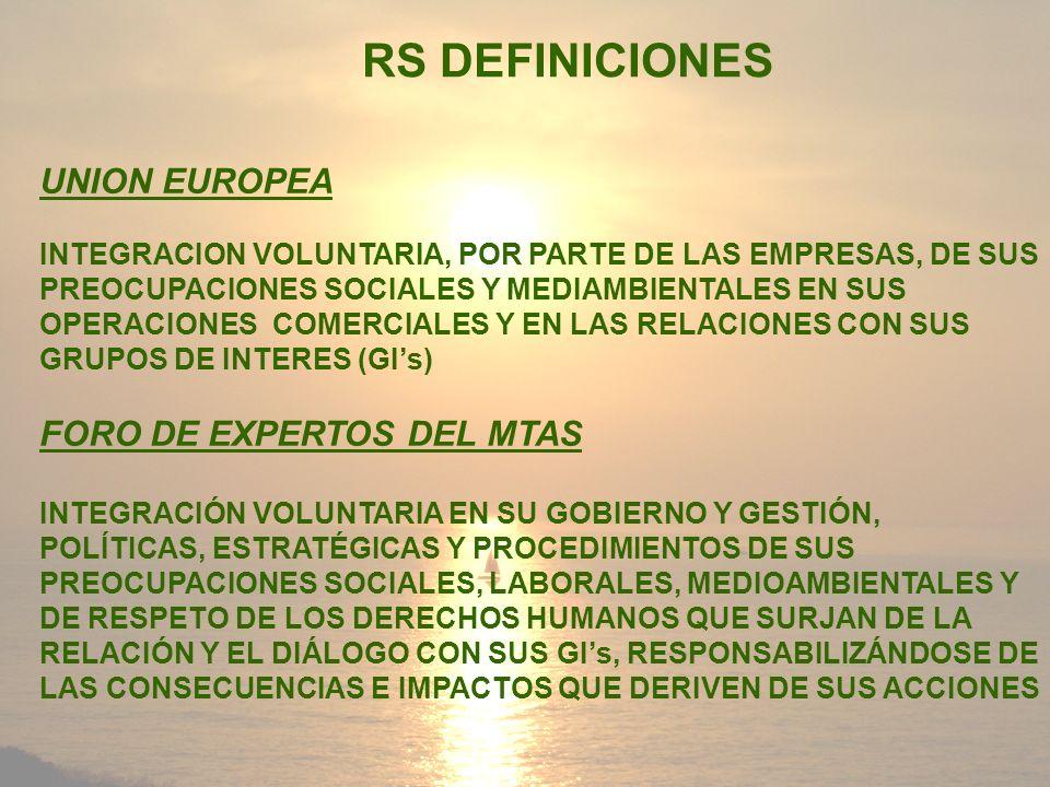 RS DEFINICIONES UNION EUROPEA INTEGRACION VOLUNTARIA, POR PARTE DE LAS EMPRESAS, DE SUS PREOCUPACIONES SOCIALES Y MEDIAMBIENTALES EN SUS OPERACIONES C