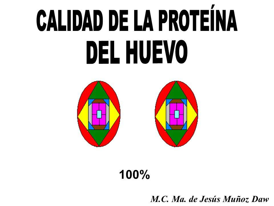 100% M.C. Ma. de Jesús Muñoz Daw