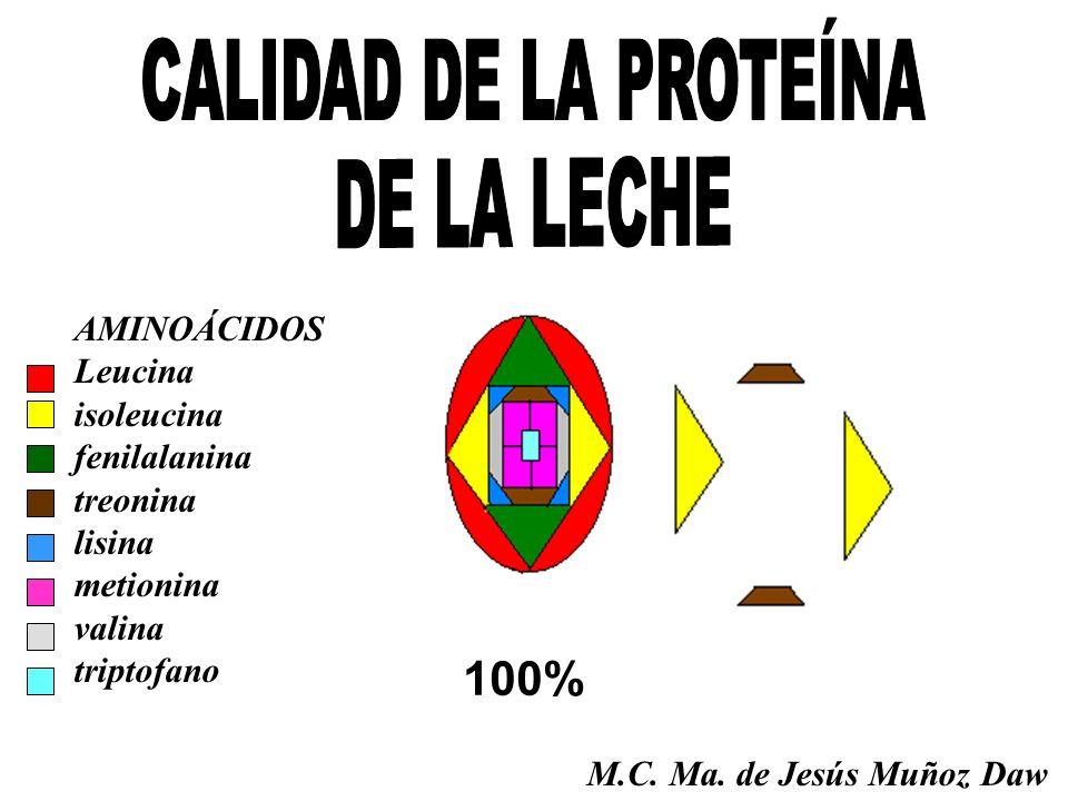 100% AMINOÁCIDOS Leucina isoleucina fenilalanina treonina lisina metionina valina triptofano M.C. Ma. de Jesús Muñoz Daw