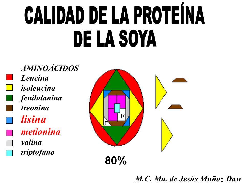 80% F F AMINOÁCIDOS Leucina isoleucina fenilalanina treonina lisina metionina valina triptofano M.C. Ma. de Jesús Muñoz Daw