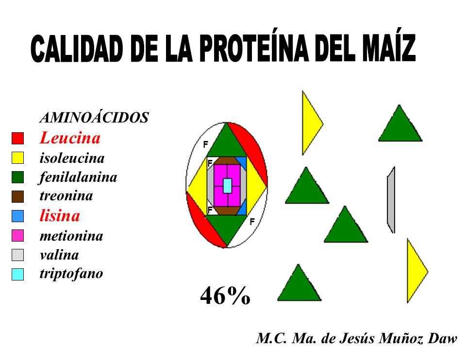 F F F 46% F AMINOÁCIDOS Leucina isoleucina fenilalanina treonina lisina metionina valina triptofano M.C. Ma. de Jesús Muñoz Daw