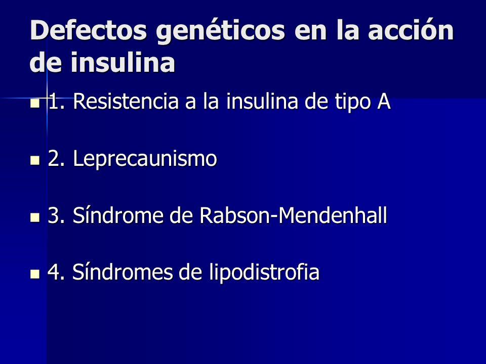 Defectos genéticos en la acción de insulina 1. Resistencia a la insulina de tipo A 1. Resistencia a la insulina de tipo A 2. Leprecaunismo 2. Leprecau