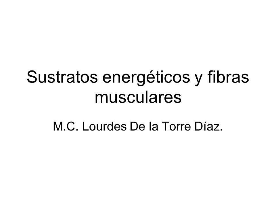 Sustratos energéticos y fibras musculares M.C. Lourdes De la Torre Díaz.