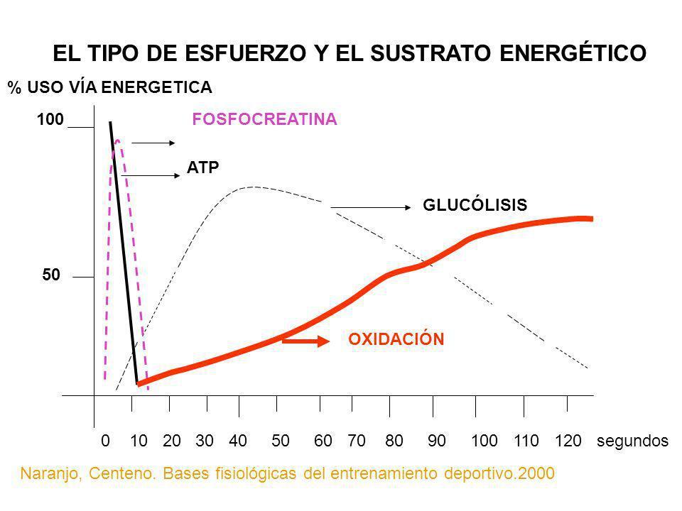 EL TIPO DE ESFUERZO Y EL SUSTRATO ENERGÉTICO FOSFOCREATINA GLUCÓLISIS ATP OXIDACIÓN 50 100 % USO VÍA ENERGETICA 0 10 20 30 40 50 60 70 80 90 100 110 1