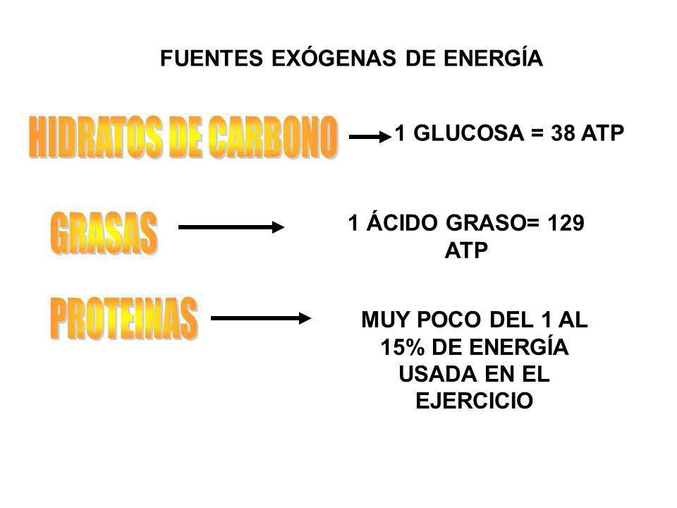 FUENTES EXÓGENAS DE ENERGÍA 1 GLUCOSA = 38 ATP 1 ÁCIDO GRASO= 129 ATP MUY POCO DEL 1 AL 15% DE ENERGÍA USADA EN EL EJERCICIO